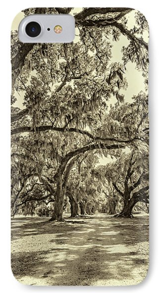Southern Lane - Evergreen Plantation -sepia IPhone Case by Steve Harrington