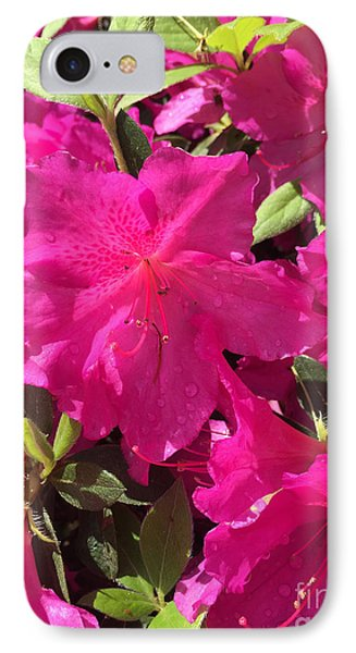 Southern Pink IPhone Case