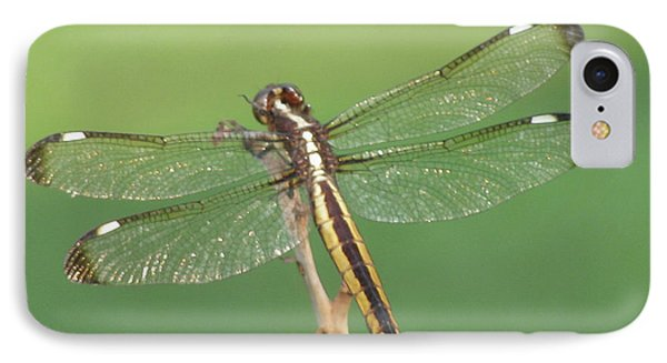 IPhone Case featuring the photograph Spangled Skimmer Dragonfly Female by Donna Brown