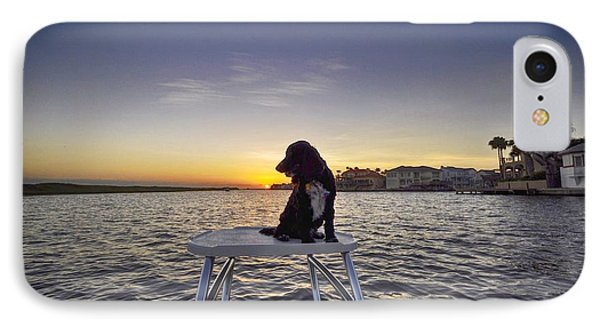 Spaniel At Sunset IPhone Case