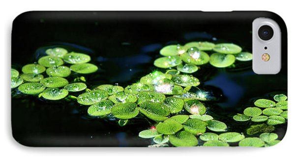 Sparkling Dewdrops IPhone Case by Mark Andrew Thomas