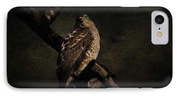 Sparrow Hawk IPhone Case