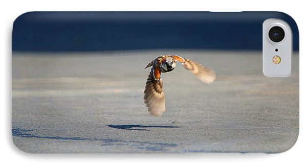 Sparrow On A Mission IPhone Case by Dan Redmon