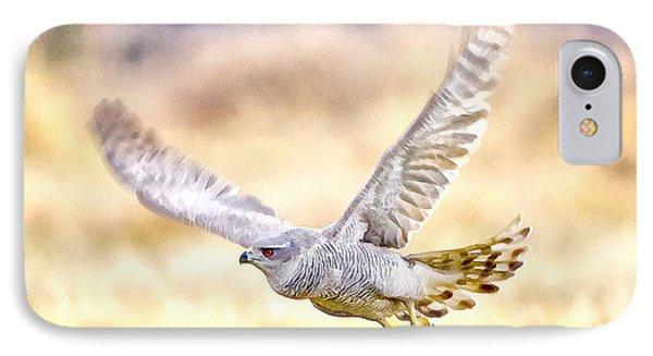 Sparrowhawk IPhone Case