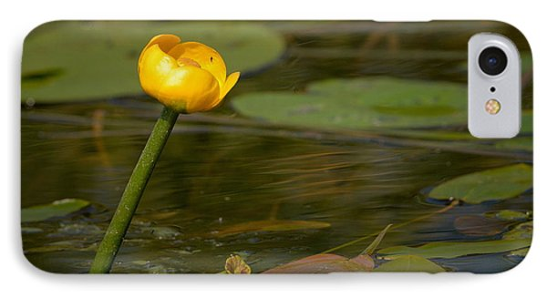 IPhone Case featuring the photograph Spatterdock by Jouko Lehto