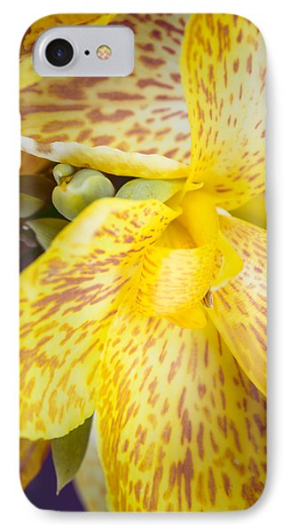 IPhone Case featuring the photograph Speckled Canna by Christi Kraft