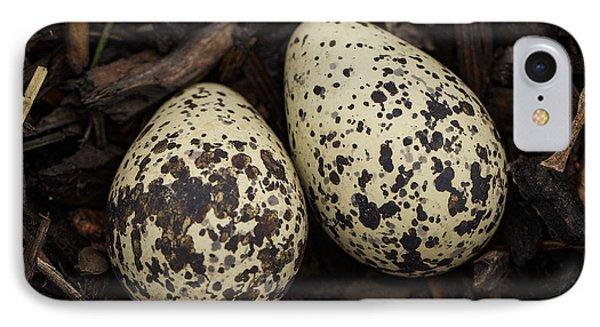 Speckled Killdeer Eggs By Jean Noren IPhone 7 Case