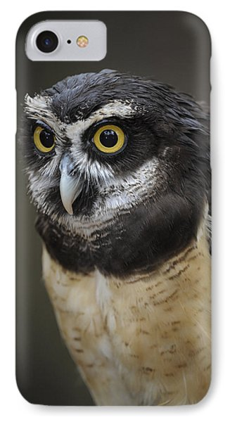 Spectacled Owl IPhone Case by Tyson and Kathy Smith