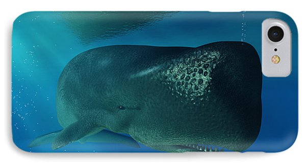 Sperm Whale IPhone Case by Daniel Eskridge