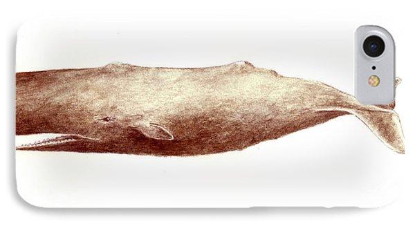 Sperm Whale Phone Case by Michael Vigliotti