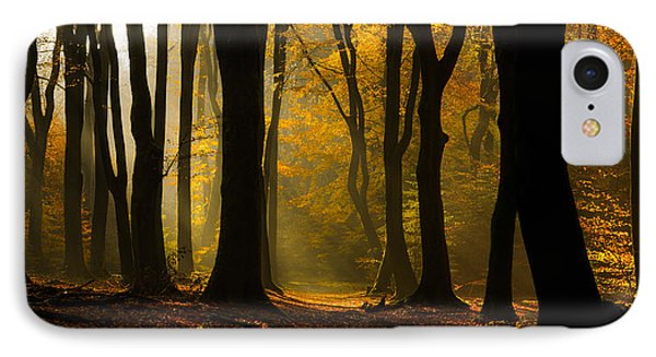Tree iPhone 7 Case - Speulder Panorama by Martin Podt
