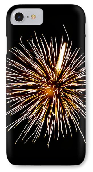 Spider Ball IPhone Case by Phill Doherty