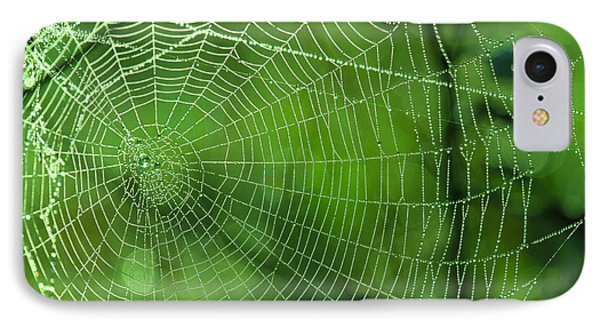 Spider Dew IPhone Case by Paul Marto