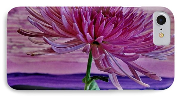 IPhone Case featuring the photograph Spider Mum With Abstract by Marsha Heiken