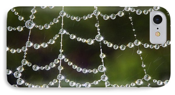 Spider Web Decorated By Morning Fog IPhone Case by William Lee