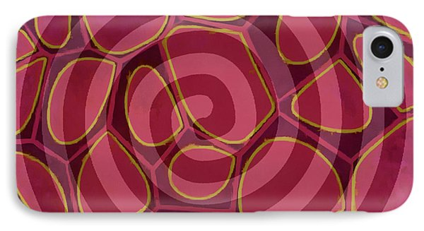 Spiral 2 - Abstract Painting IPhone Case by Edward Fielding