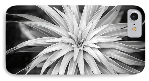 IPhone Case featuring the photograph Spiral Black And White by Christina Rollo