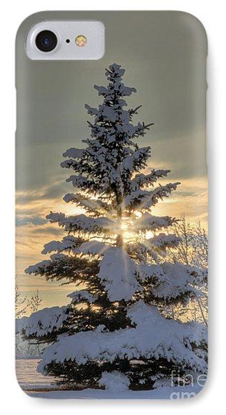 Spirit Tree IPhone Case by Brad Allen Fine Art
