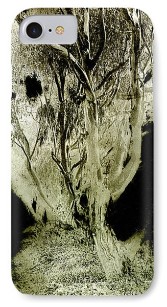 Spirit Tree IPhone Case by Paul W Faust -  Impressions of Light