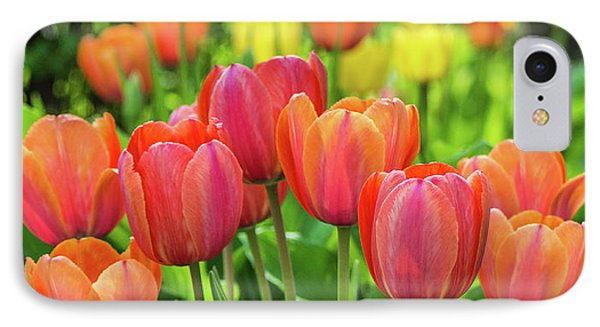 IPhone Case featuring the photograph Splash Of April Color by Bill Pevlor