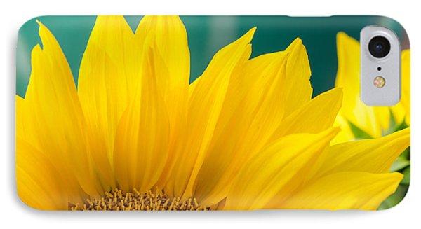 Splendid Sunflower IPhone Case
