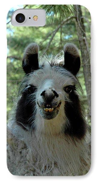 IPhone Case featuring the photograph Spooky Llama by LeeAnn McLaneGoetz McLaneGoetzStudioLLCcom
