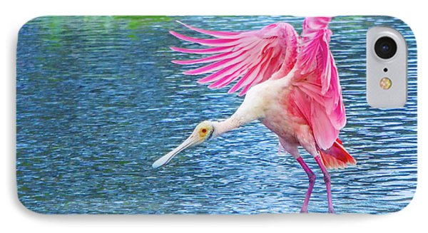 Spoonbill Splash IPhone Case by Mark Andrew Thomas