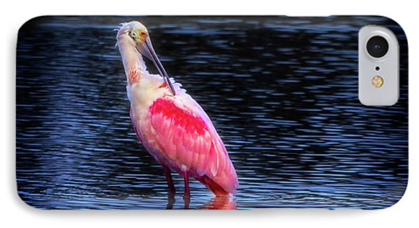 Spoonbill Sunset IPhone Case