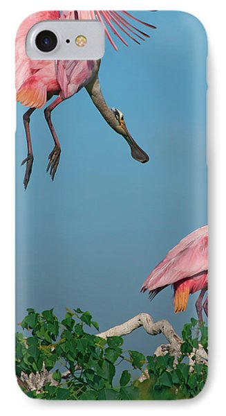 Spoonbills Greeting IPhone Case by Tim Fitzharris