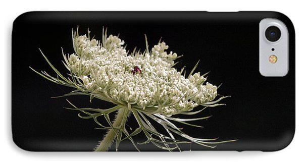 Spotlight On The Queen IPhone Case by Angie Rea