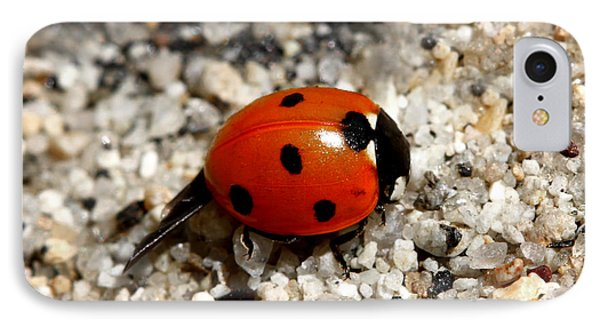 Spotted Ladybug Wings Dragging In Sand IPhone Case by Tracie Kaska