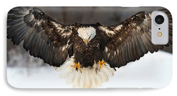 Spread Eagle IPhone Case by CR  Courson