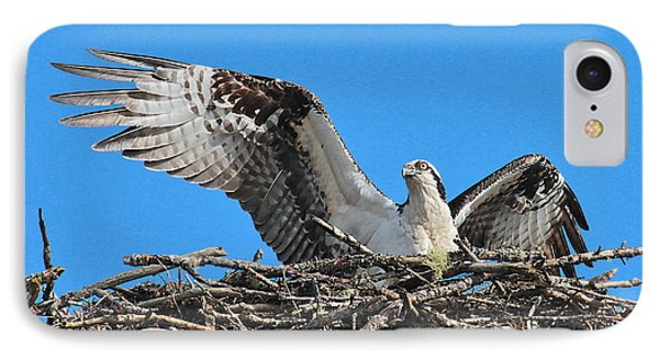 IPhone Case featuring the photograph Spread-winged Osprey  by Debbie Stahre