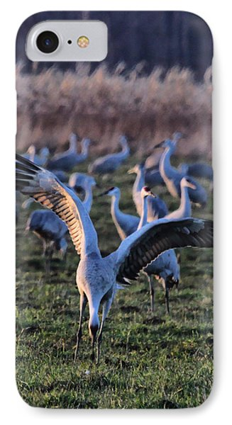 IPhone Case featuring the photograph Spread Your Wings by Shari Jardina