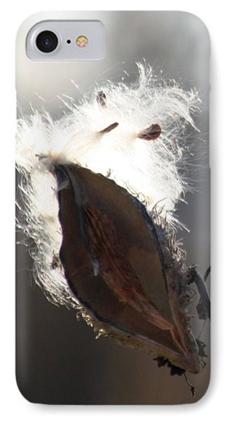 Spreading Seeds IIi IPhone Case by Diane Merkle