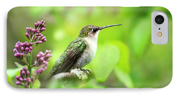 Spring Beauty Ruby Throat Hummingbird Phone Case by Christina Rollo