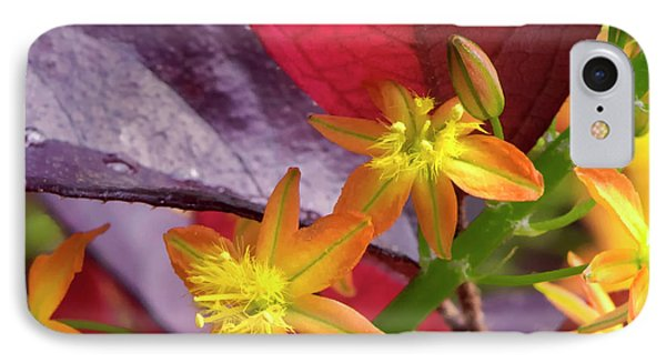 IPhone Case featuring the photograph Spring Blossoms 2 by Stephen Anderson