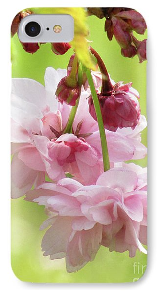 Spring Blossoms #8 IPhone Case by Kim Tran
