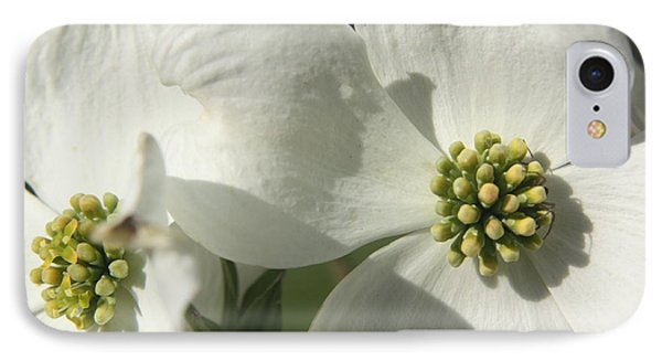 IPhone Case featuring the photograph Spring Blossoms by Diane Merkle
