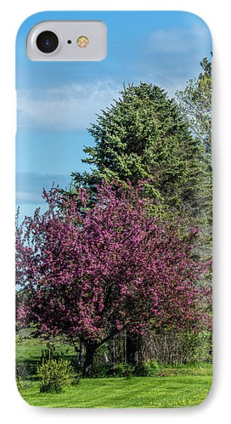 IPhone Case featuring the photograph Spring Blossoms by Paul Freidlund