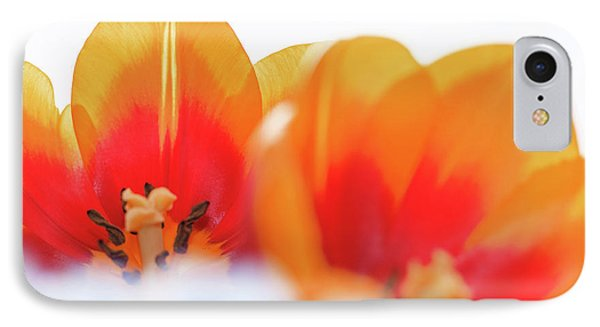 Spring Breeze IPhone Case by Afrodita Ellerman