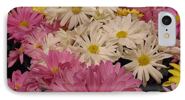 Spring Daisies IPhone Case by Charlotte Gray