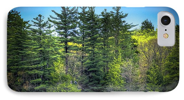 Spring Day At Old Forge Pond IPhone Case by David Patterson