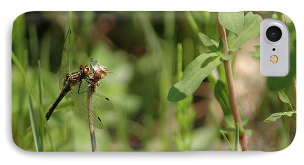 IPhone Case featuring the photograph Spring Dragonfly by LeeAnn McLaneGoetz McLaneGoetzStudioLLCcom