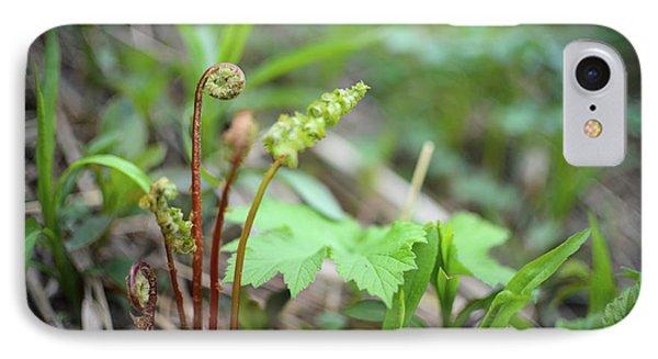 Spring Ferns IPhone Case