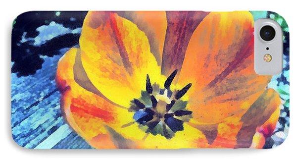 Spring Flower Bloom IPhone Case by Derek Gedney