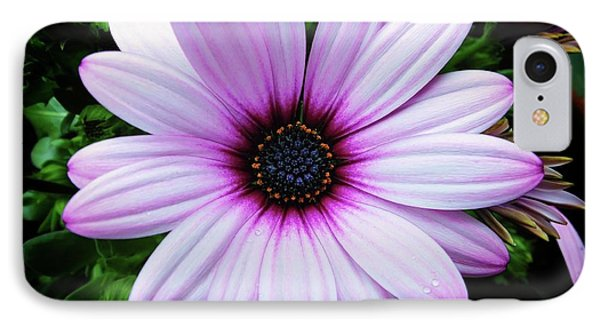 Spring Flower IPhone Case by Karen Stahlros