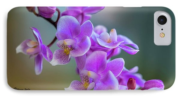 Spring For You IPhone Case by Marvin Spates