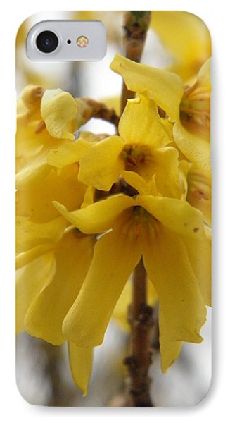 Spring Forsythia Blossoms Phone Case by Angie Runyan