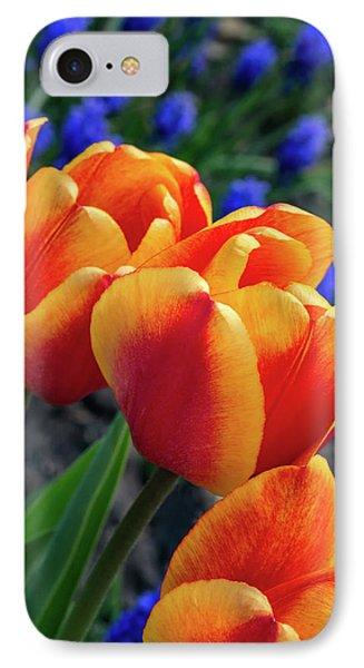 Spring Garden - Act One 3 IPhone Case by Steve Harrington
